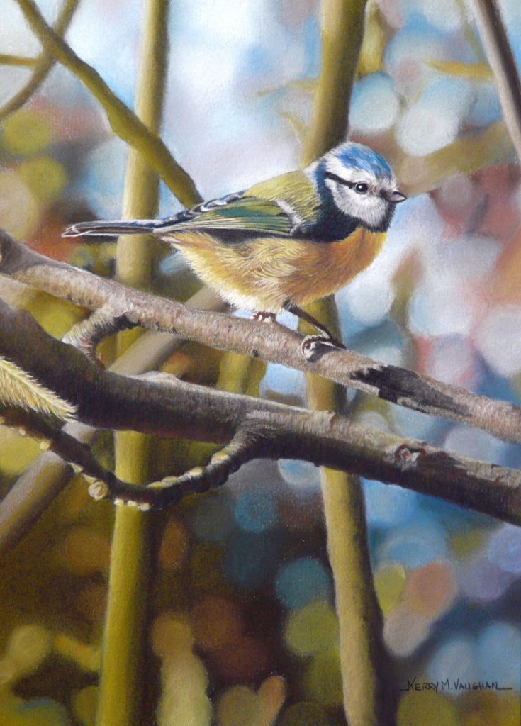 Bluetit painting