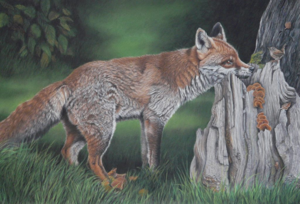 Fox and Wren pastel painting