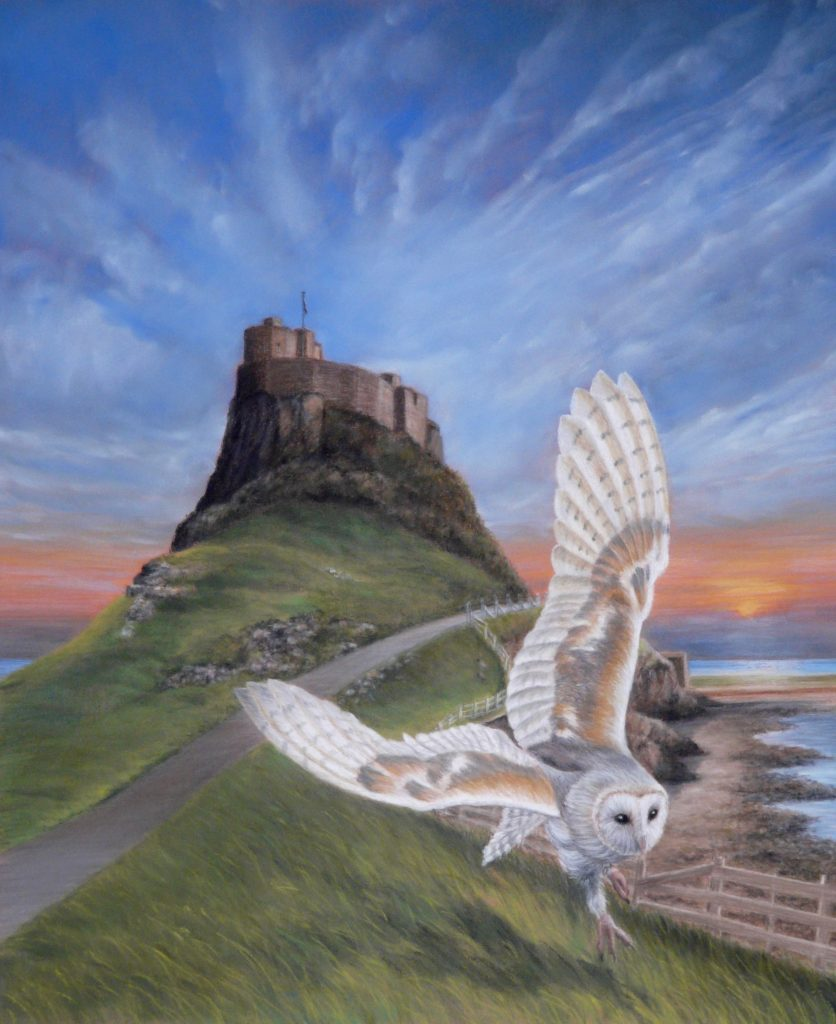 Owl at Lindisfarne pastel