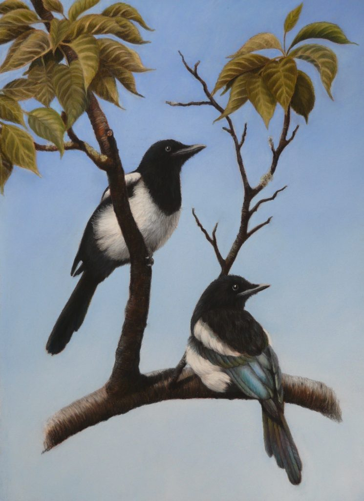 Magpies painting