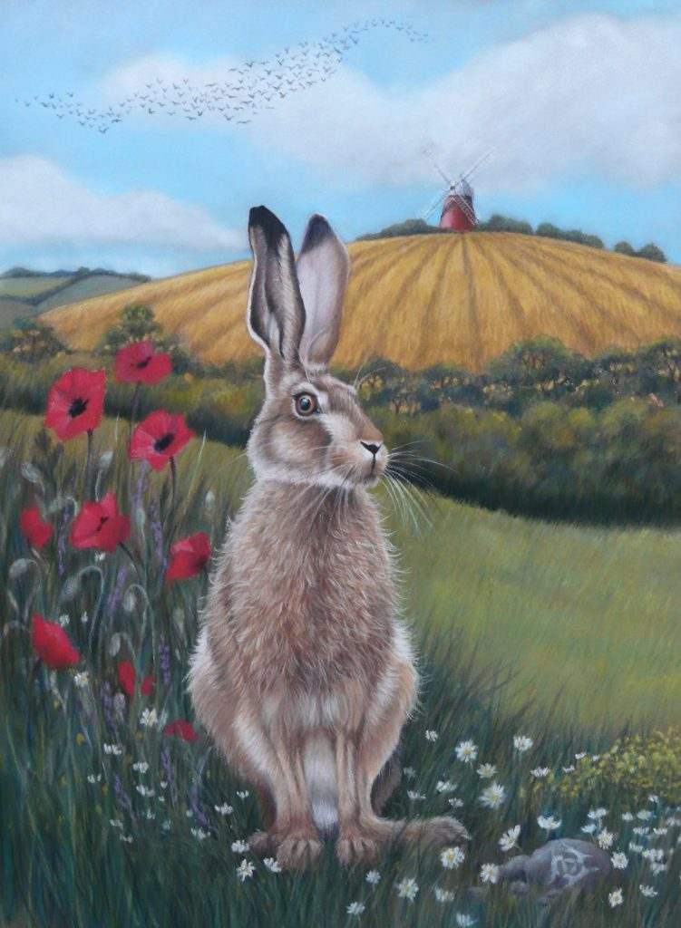Hare at Halnaker Windmill